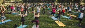 yoga au parc Maisonneuve
